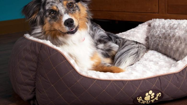 Get luxury dog beds from Scruffs, the pet bedding specialists from Manchester